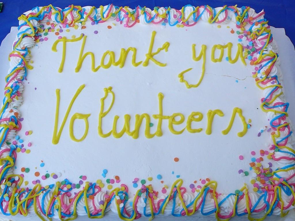 volunteer cake 3823023057_491920711f_o